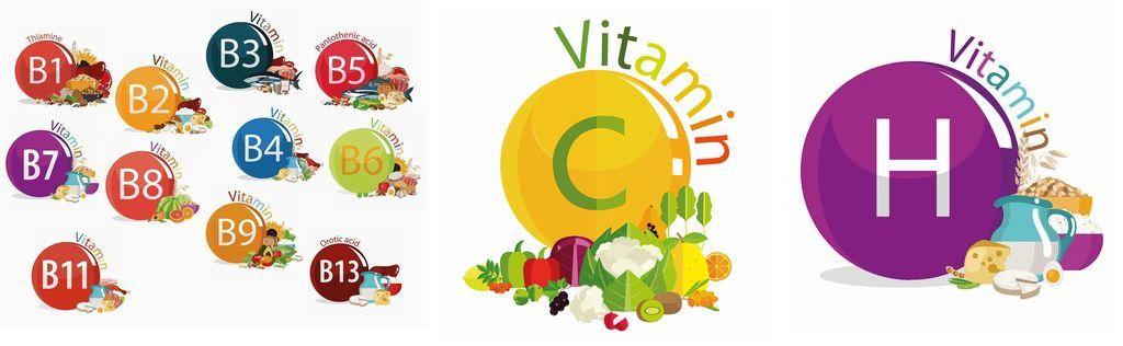 ビタミン群